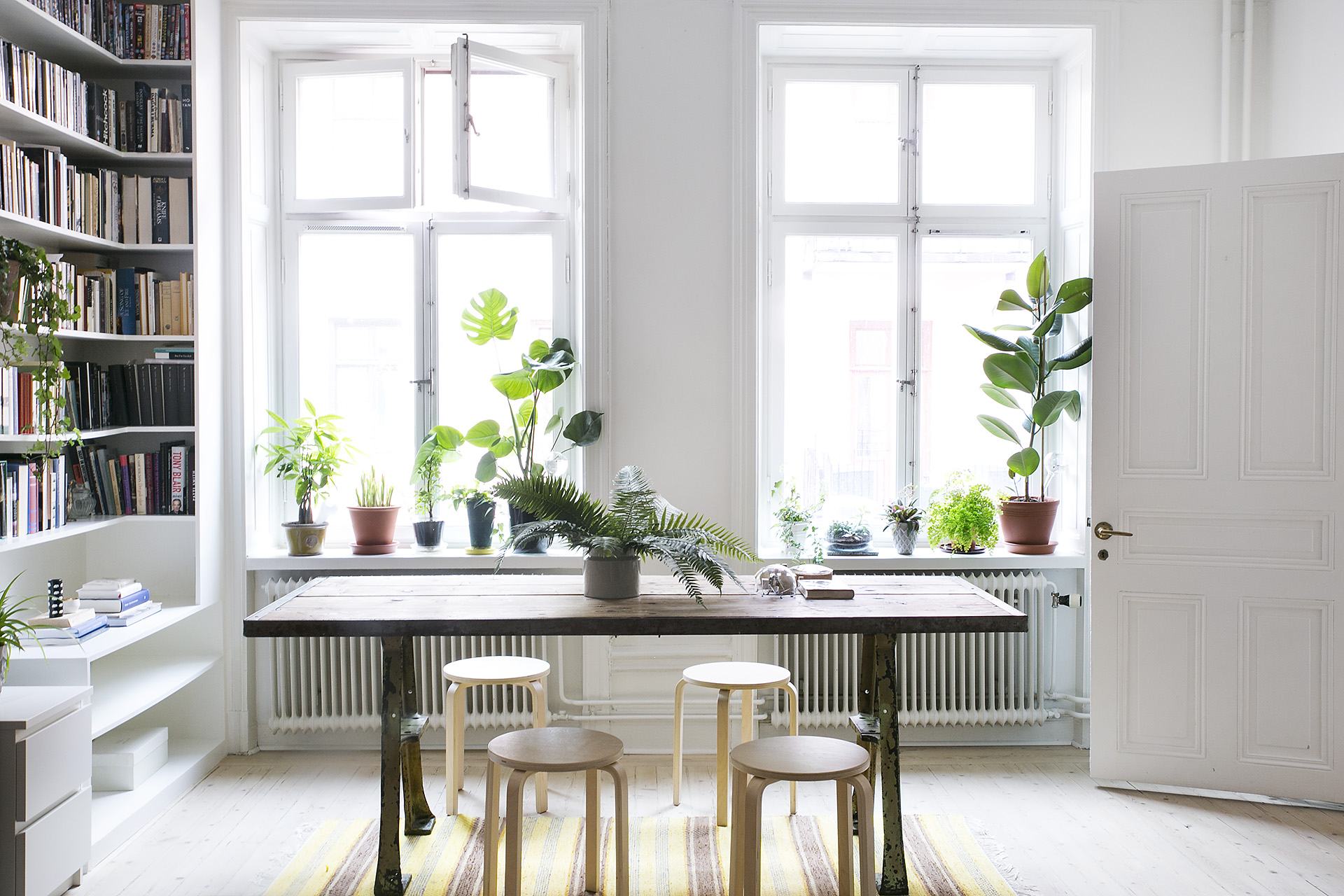 Apartment plants living rooms: images about living room on ...