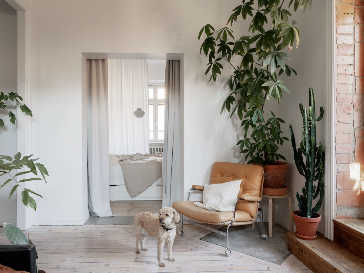 Scandinavian bohemian apartment